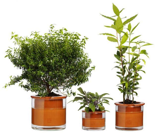 arrosage par capillarit pour plante assoiff e. Black Bedroom Furniture Sets. Home Design Ideas